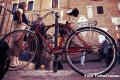 bicicletta di Marino