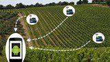 Wireless Sensor Network WEB