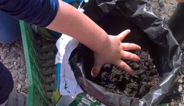 Green day, le mani nella terra, l'orto del vicino è più gustoso
