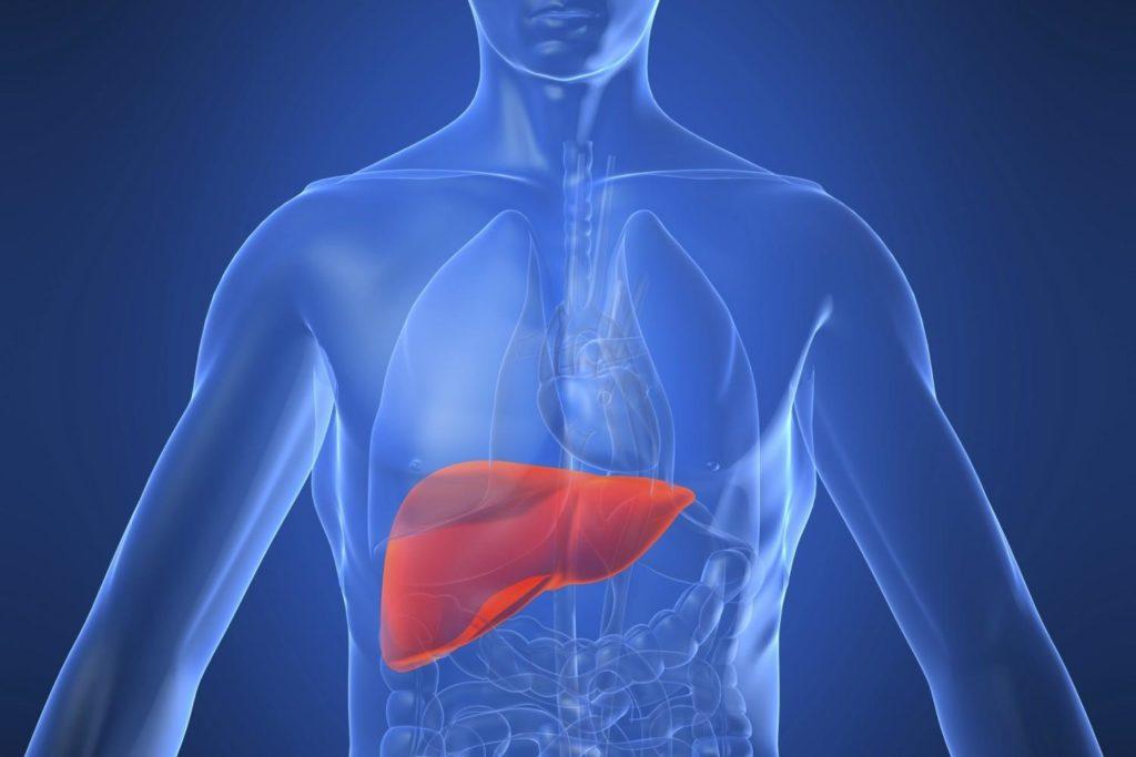 Malattie autoimmuni del fegato: tutte rare ma solo una